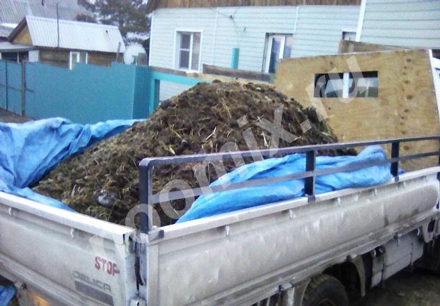 Продаю коровий навоз, Республика Бурятия