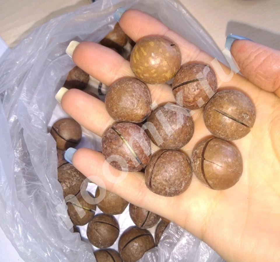 Продаю - Макадамия орех, Республика Татарстан