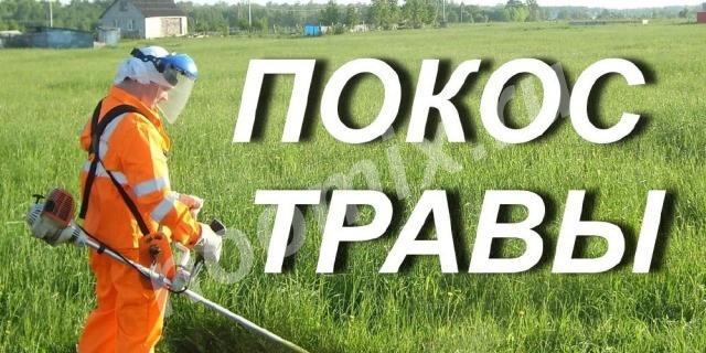 Покос травы, уборка территорий, Брянская область