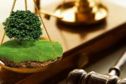 Юридическое агентство Де - Факто на рынке юридических услуг ...
